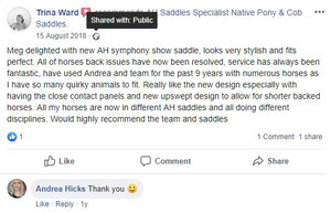 ah-saddles-facebook-review-017.JPG