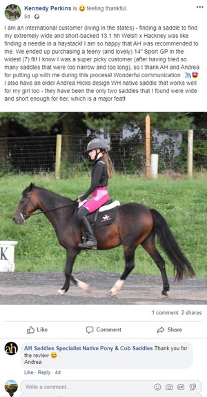 ah-saddles-facebook-review-035.jpg