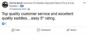 ah-saddles-facebook-review-027.JPG