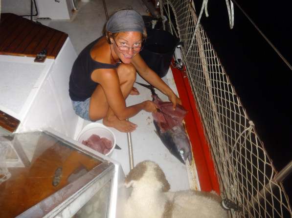 Fisch ausnehmen