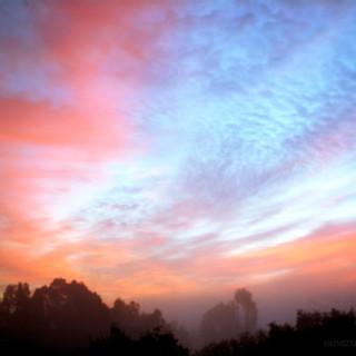 sunrise in northern Ont.jpg