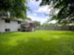 yard 1.jpg