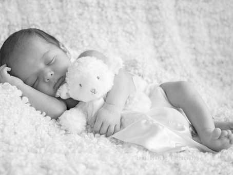 Teddy-infused Snooze | Newborn Photoshoot | Dubai