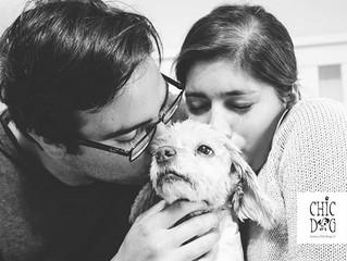 La oxitocina une a perros y a personas.