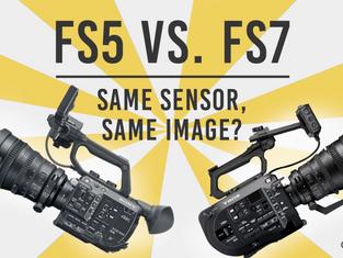 FS5 vs FS7 Shootout: Same Sensor, Same Image?