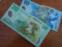 NZ $.png
