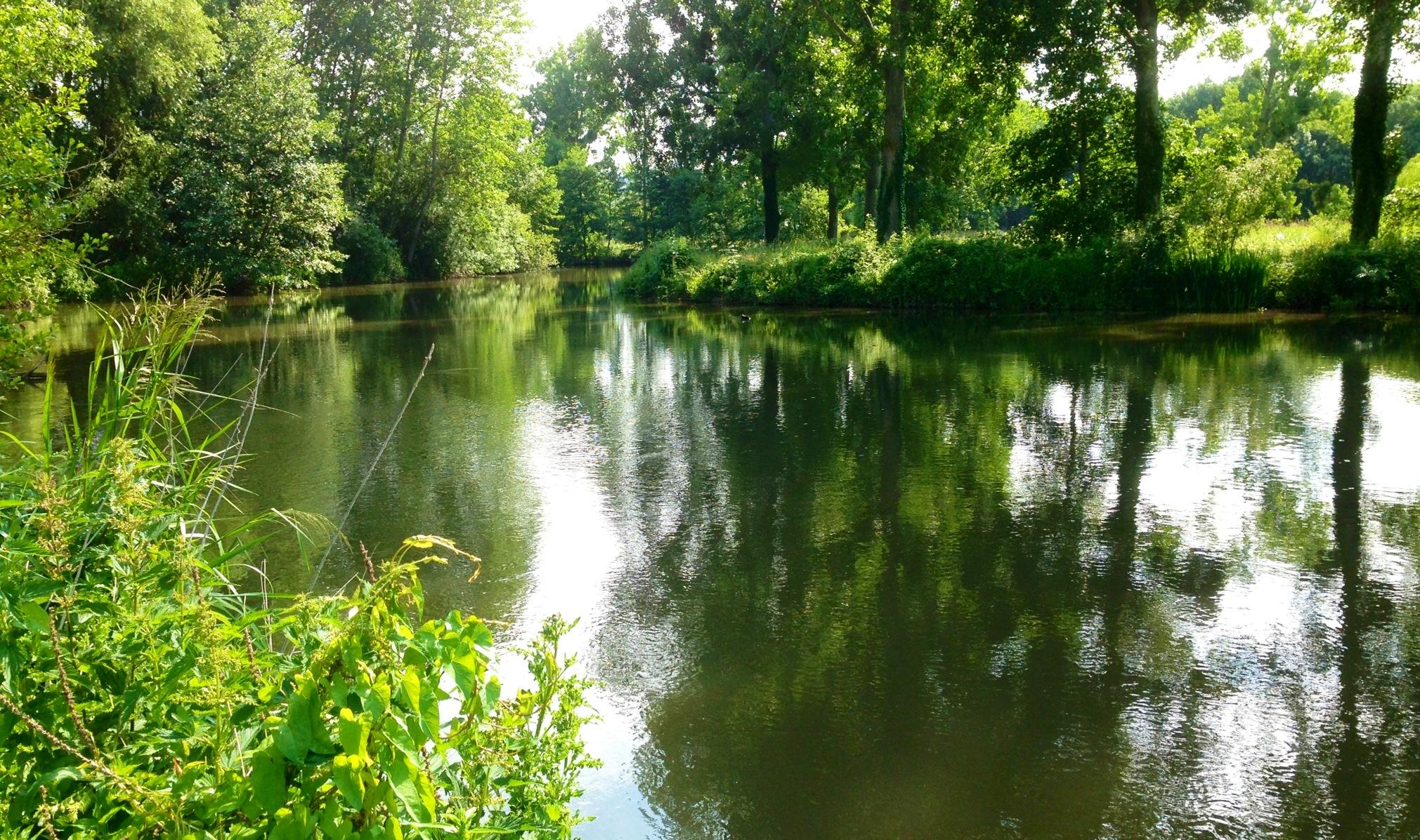 riviere printemps