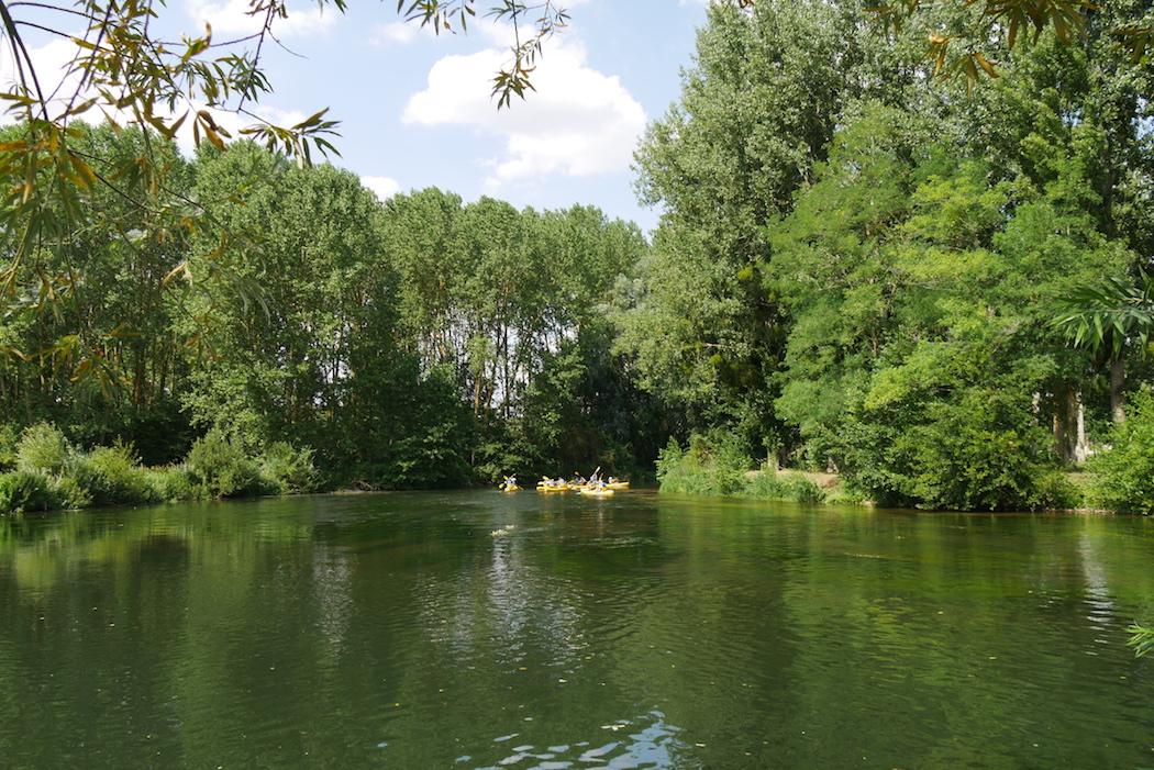 Rivière bucolique