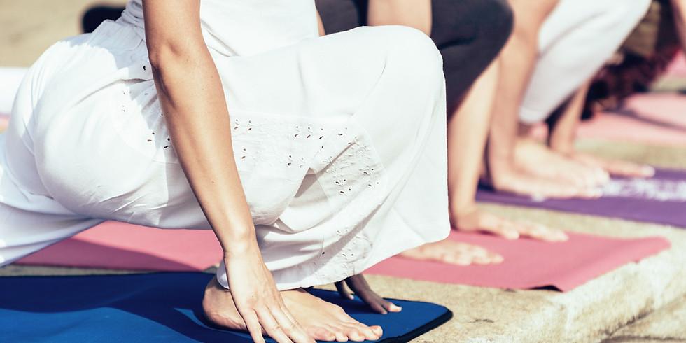 Detox Retox Yoga in the Hop Yard