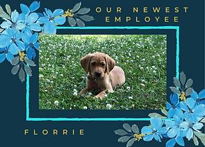 Florriewebsite.png