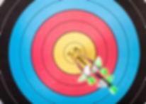 Arrows in archery target.jpg