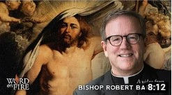 Resurrection - Bishop Barron.jpg