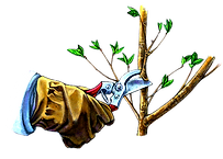 pruning-removebg-preview%20(1)_edited.pn
