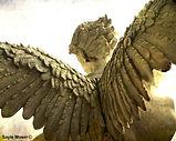 Guardian Angel wings.jpg