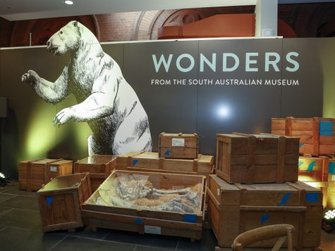 Wonders from the South Australian Museum