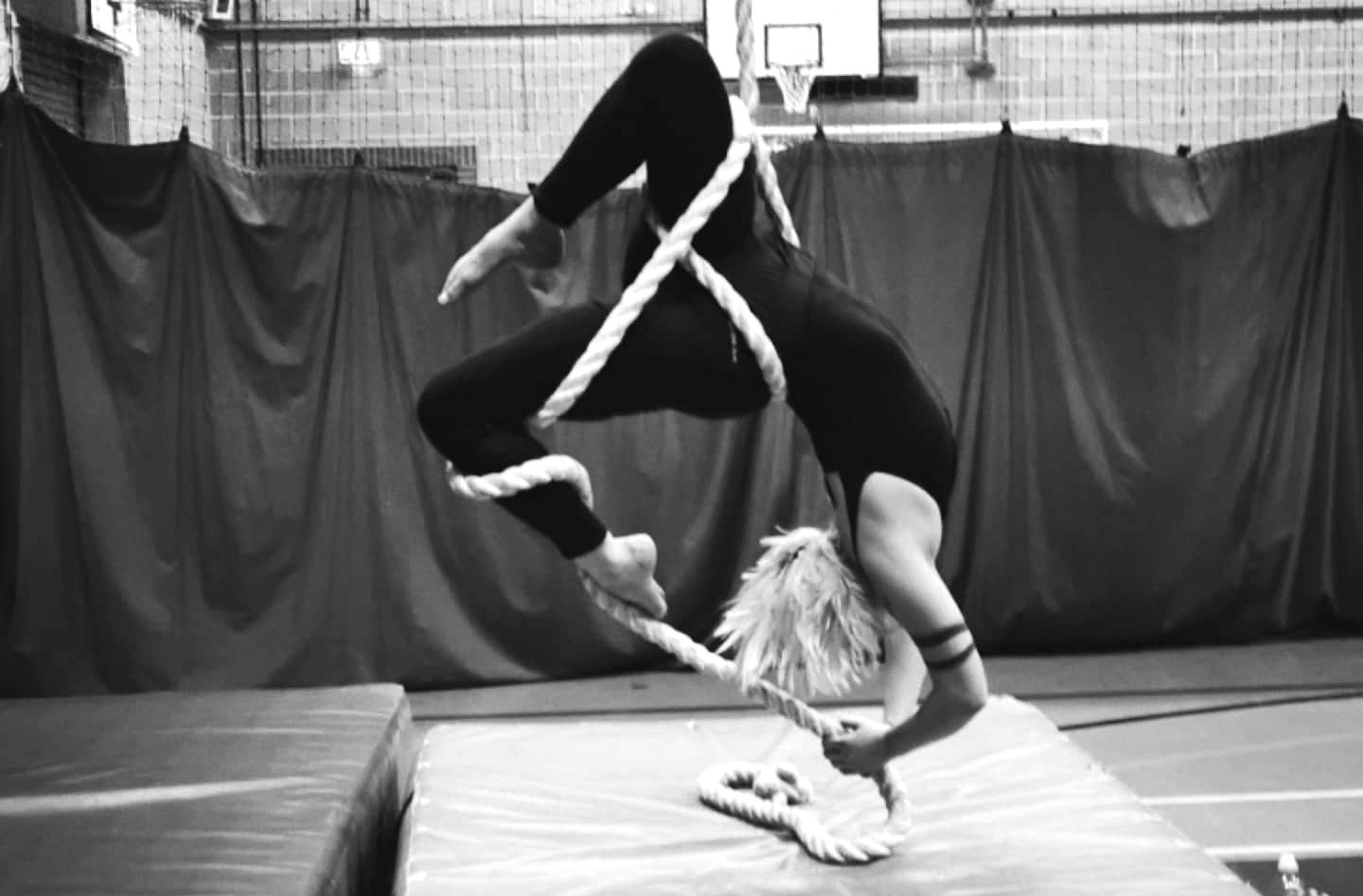 Aerial Class: Beginners to Advance