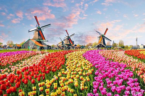 Windmolens uit Nederland