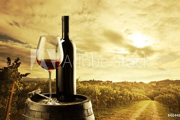 Rode wijn in wijngaard
