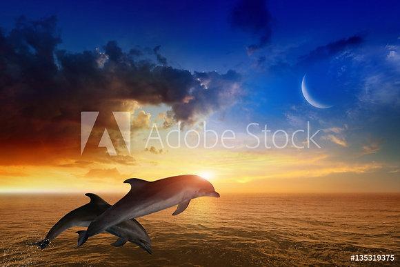 Springende dolfijnen bij zonsondergang