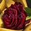 Thumbnail: Roos op gouden deken