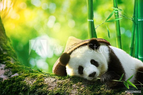 Panda met hoed