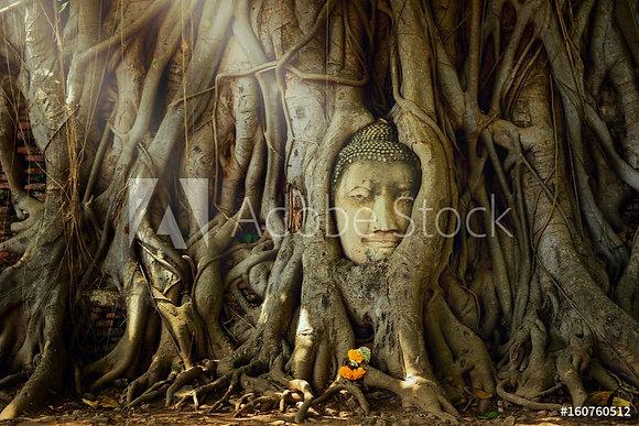 Boeddha beeld - Thailand
