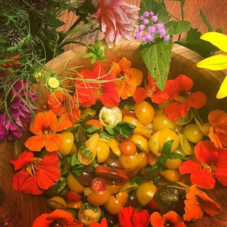 (Today's Wild Folk lunch was made with goodies from the Unschool garden & from parents' home gardens).jpg