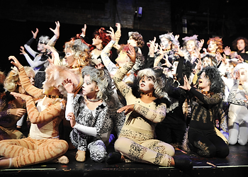 kids in youth production of Cats musical