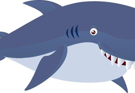 I am a Shark