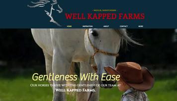 websites by maureen friesen