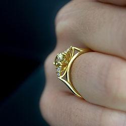 Nicola ring side black.JPG