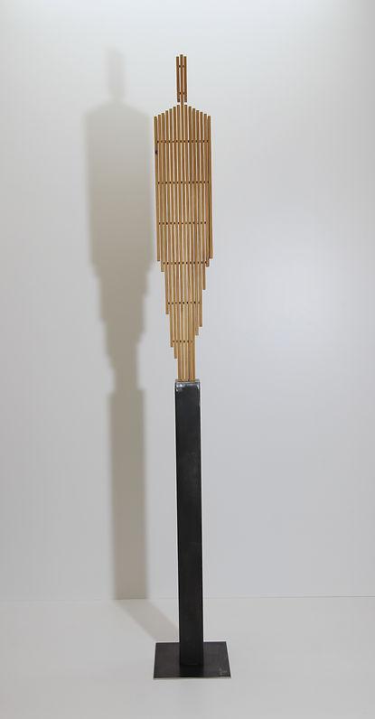 Human Planks 100.JPG