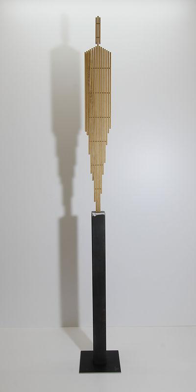Human Planks 110.JPG