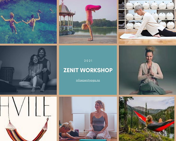 zenit workshops 2021.png