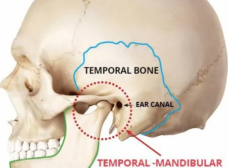 3 Stretches to Prevent TMJ