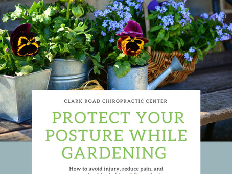 Protect Your Posture While Gardening