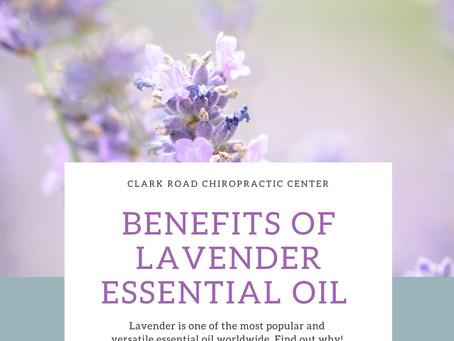 Benefits of Lavender Essential Oils