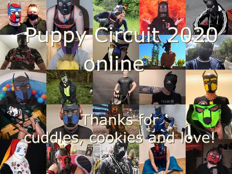 Die Puppy Circuit 2020 online (Bericht)