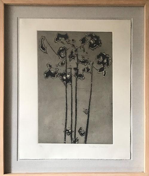 6. Flores rotas_ Grabado_ 45 x 30 cm_ 20