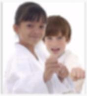 karate sarasota
