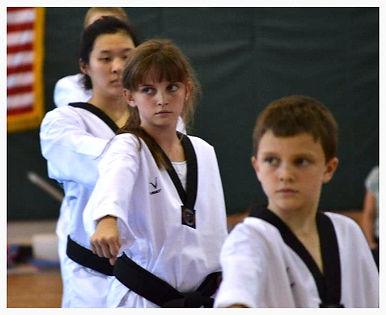 martial arts sarasota