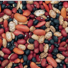 nuni's four bean salad