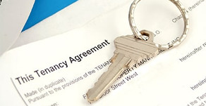 Higher numbers than ever have renewed tenancy deals since the lockdown
