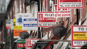 Rental market activity shows 'green shoots' of recovery