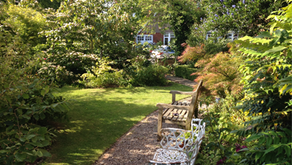 Sharp rise in demand for rental homes with garden space