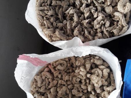 Исследование микробиологической безопасности экструдированных кормовых добавок при хранении