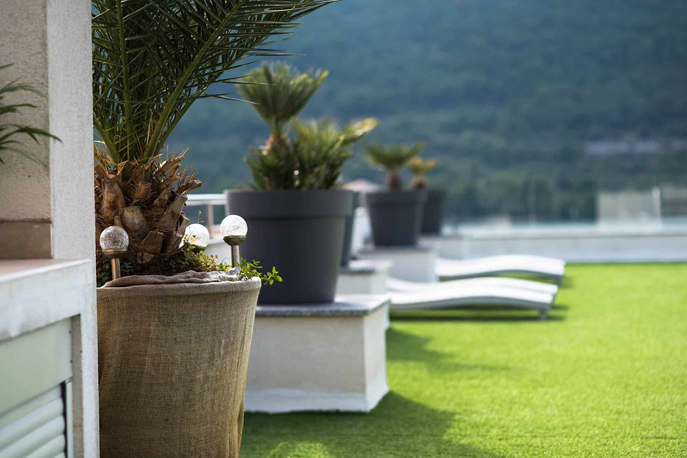 palm_tree_holidays_roko_roof_terrace-min