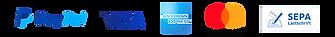 de-pp_plus-logo-quer_ohne_PUI_540x60px_e