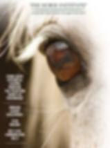 THI Brochure Cover.jpg