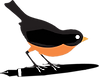 ROBIN-COLORED-LOGO.png